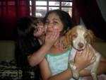 Furetto princess - ( (1 anno))