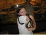Serpente Emmanuella - ( (2 anni))